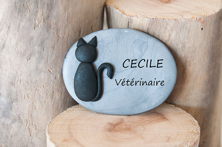 badge veterinaire fimo